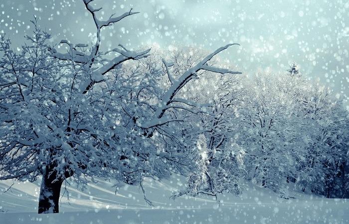 Crypto winter