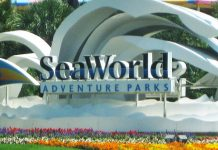 90% of SeaWorld staff put on 'temporary leave' amid COVID-19 pandemic