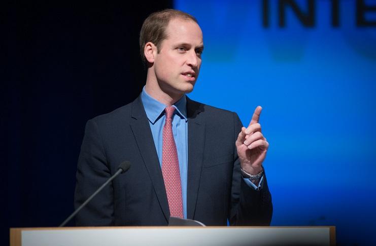 Prince William as the Duke of Cambridge