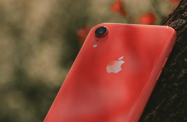 Apple iPhone 7 has a small camera sensor size