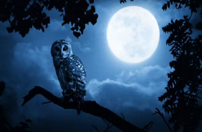 Rare Blue Moon Will Occur on Halloween 2020