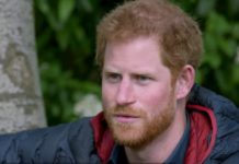 Prince Harry 'encouraged' to leave by Princess Diana?